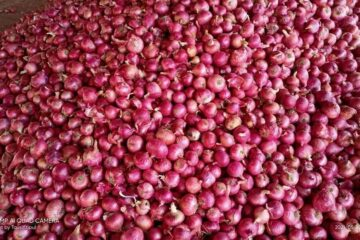 Unknown Gunmen: Onion Sellers Suspend Supply To South East