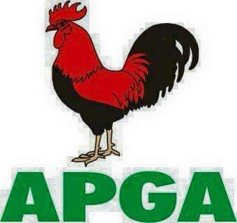 BREAKING: APGA in shambles as party's NWC suspends Victor Oye as National Chairman